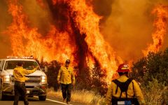 Firefighters across California struggle to contain the massive outbreak of fire under current weather conditions.